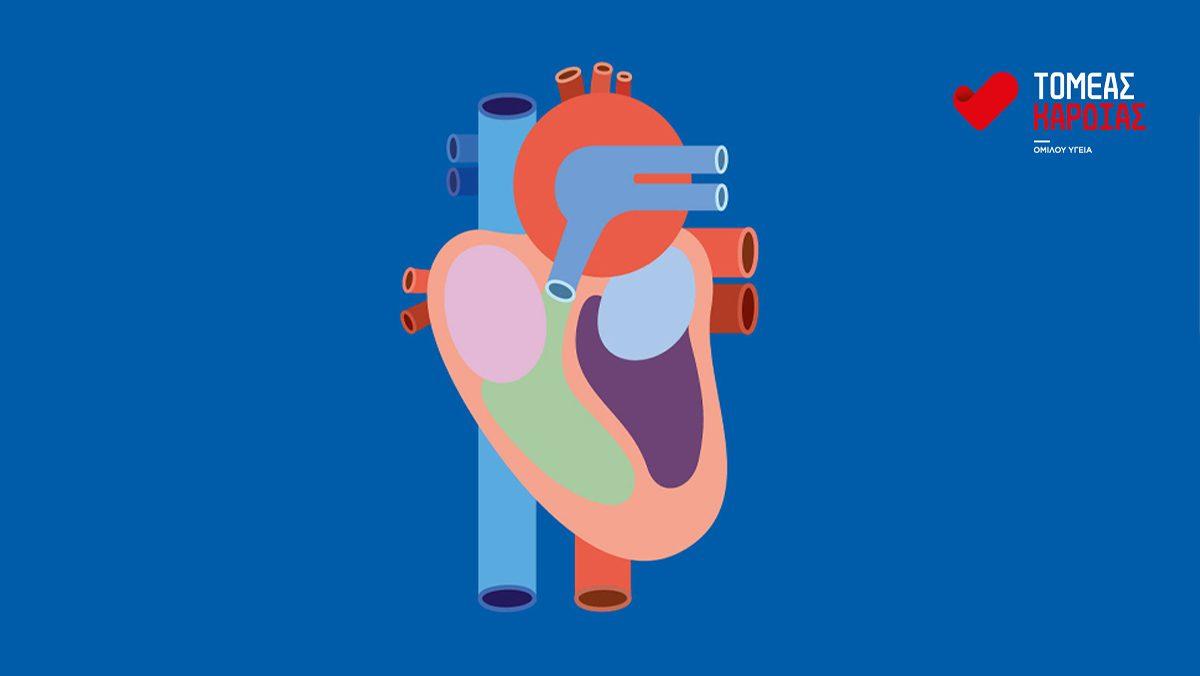 Τομέας Καρδιας