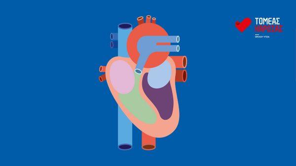 Τομέας Καρδιάς ΜΗΤΕΡΑ