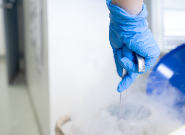 What Solutions Does Egg Freezing Offer